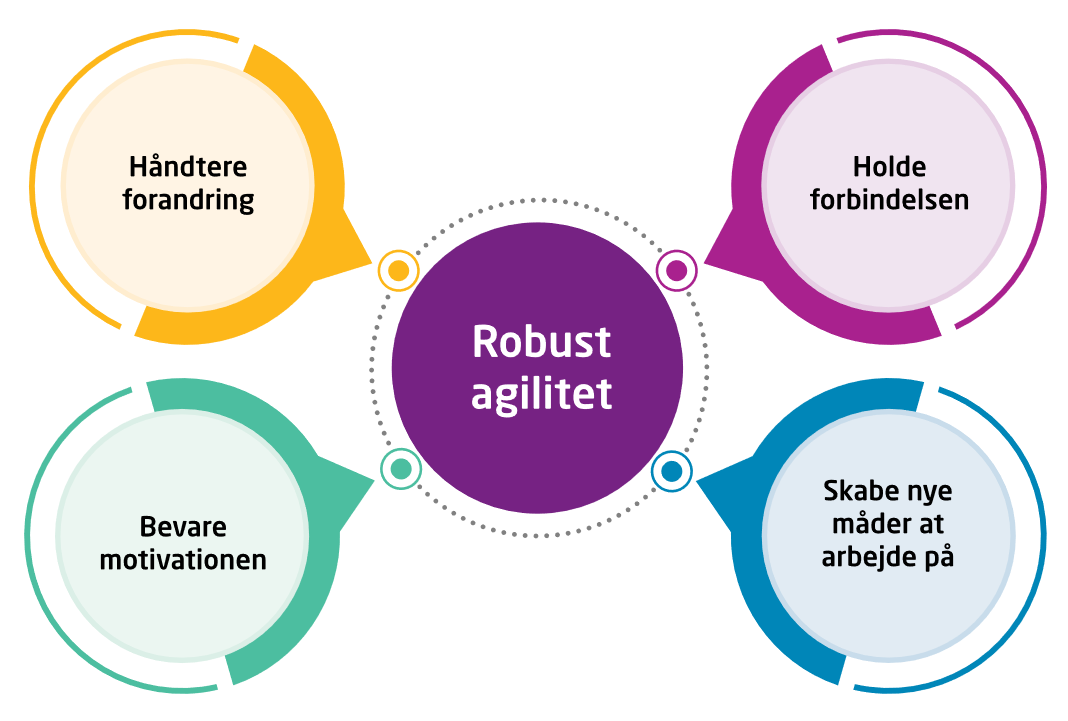 The Resilient Agility Model